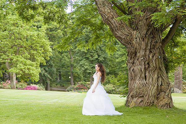 Bröllopsfoto Träd