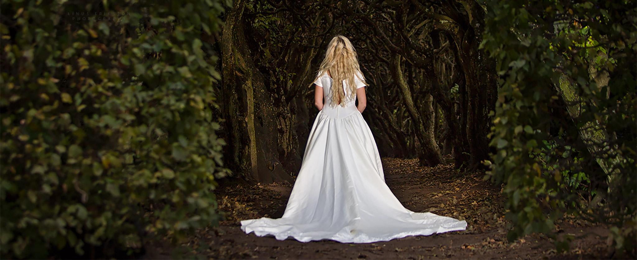 Bröllopsgalleri